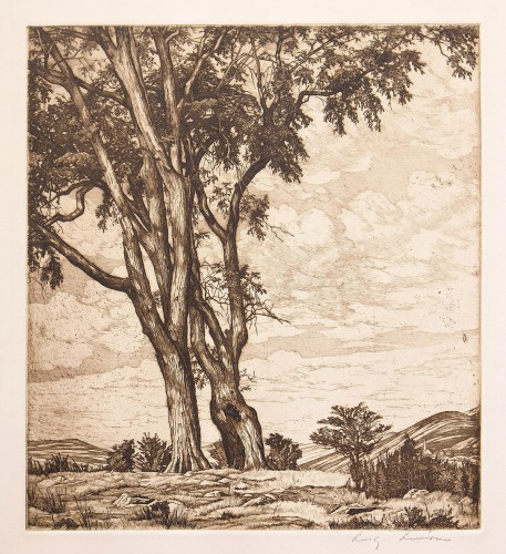 "Luigi Lucioni(1900-1988), ""Hilltop Elms"",1954, etching, Gift of William and Patty Nelson, 2011.12.25"