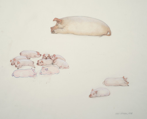 Bone Creek Van Hoesen Pigs
